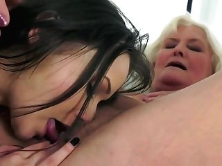 Amazing Anina Feasting On Some Experienced Poontang