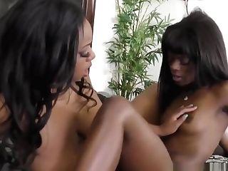 Black Arse Bitches Sharing Big Fake Penis