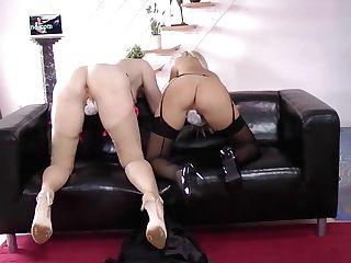 Stockings Brit Licks Vag